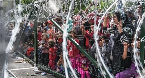 Sommet extraordinaire de l'UE sur les migrants le 23 septembre  - ảnh 1