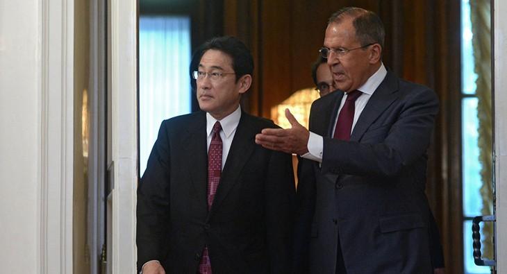 Russie et Japon se penchent à nouveau sur le traité de paix - ảnh 1
