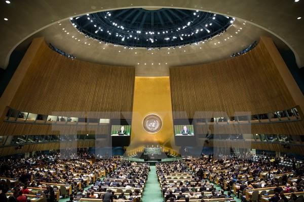 Sommet de l'ONU: le Vietnam en position de force - ảnh 1