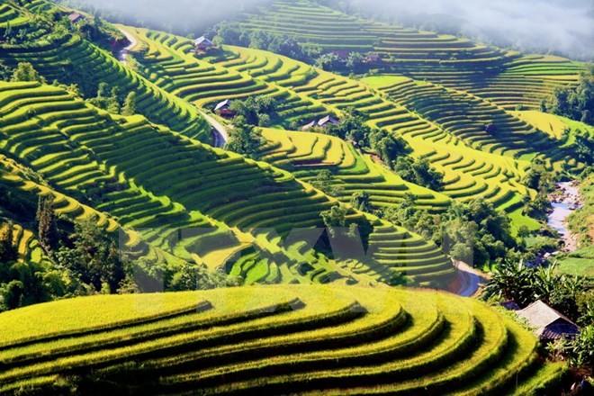 Coup d'envoi de la semaine culturelle et touristique des rizières en terrasse de Hoàng Su Phi  - ảnh 1