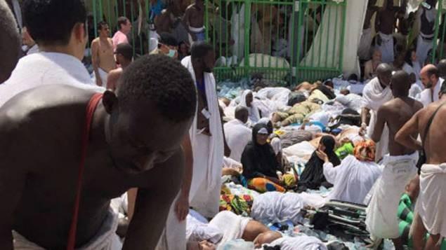 Bousculade à La Mecque : 717 pèlerins tués et 863 blessés - ảnh 1
