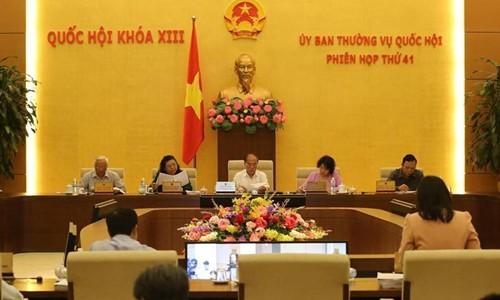 Clôture de la 41ème session du Comité permanent de l'AN - ảnh 1