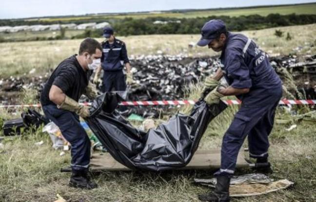 Pays-Bas: de nouveaux restes de victimes du MH17 ont été retrouvés  - ảnh 1