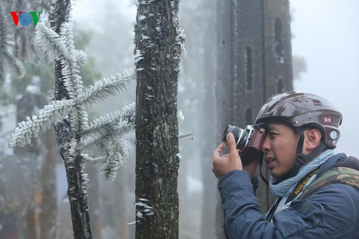 Les touristes se font prendre en photo sur fond de gelée blanche à Sa Pa - ảnh 4