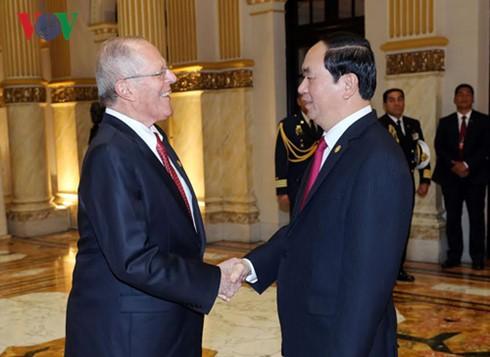 Entretien entre le président Tran Dai Quang et son homologue péruvien - ảnh 1