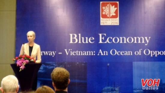 Coopération vietnamo-norvégienne pour le développement de l'économie maritime - ảnh 1