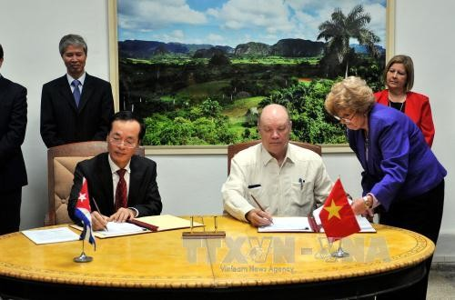 Clôture de la 34ème réunion du comité intergouvernemental Vietnam-Cuba - ảnh 1