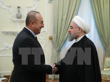 Le chef de la diplomatie turque arrive en Iran pour renforcer la coopération  - ảnh 1