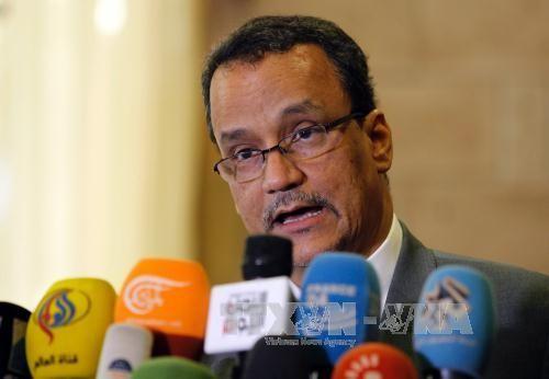 Yémen : l'Onu relance ses efforts de paix - ảnh 1