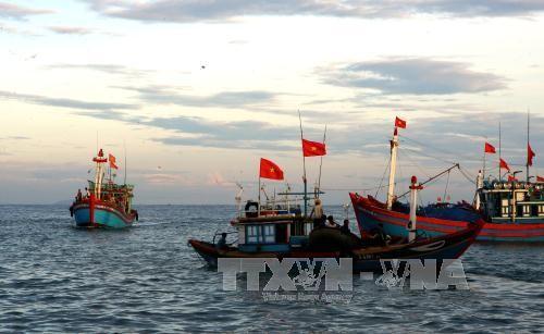 ការតាំងពិពណ៌របេតិកភ័ណ្ឌវប្បធម៌កោះសមុទ្រវៀតណាមនៅខេត្ត Quang Nam  - ảnh 1