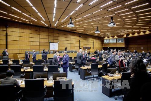 IAEA ដាស់តឿនកូរ៉េខាងជើងបញ្ចប់ការអភិវឌ្ឍន៍អាវុធនុយក្លេអ៊ែរ - ảnh 1