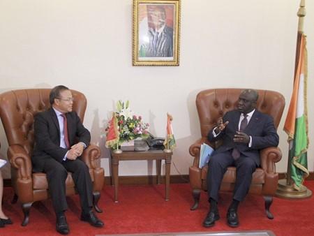 Vietnam dan Pantai Gading memperkuat  kerjasama di bidang perdagangan dan  pertanian - ảnh 1