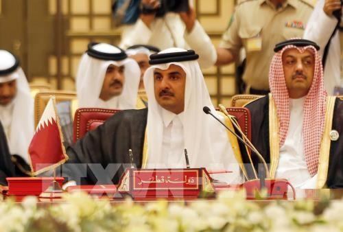 Ketegangan diplomatik di daerah Teluk : 4 negara Arab memasukan perseorangan dan organisasi yang bersangkutan dengan Qatar ke dalam daftar teroris - ảnh 1
