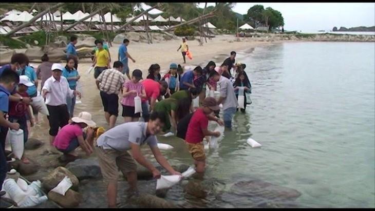 Banyak aktivitas sosial dan melindungi lingkungan di Festival Laut Nha Trang-Khanh Hoa 2017 - ảnh 1