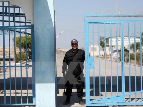 Mesir meminta supaya mensuplai listrik kepada Jalur Gaza untuk diganti dengan kerjasama keamanan - ảnh 1