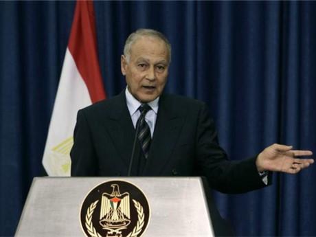 Ketegangan diplomatik di Teluk: AL menegaskan tidak mempunyai maksud menghentikan keanggotaan Qatar - ảnh 1