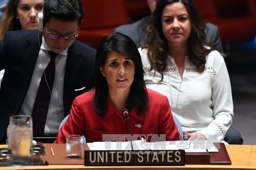 DK PBB berbeda pendapat dalam cara memecahkan masalah RDRK - ảnh 1