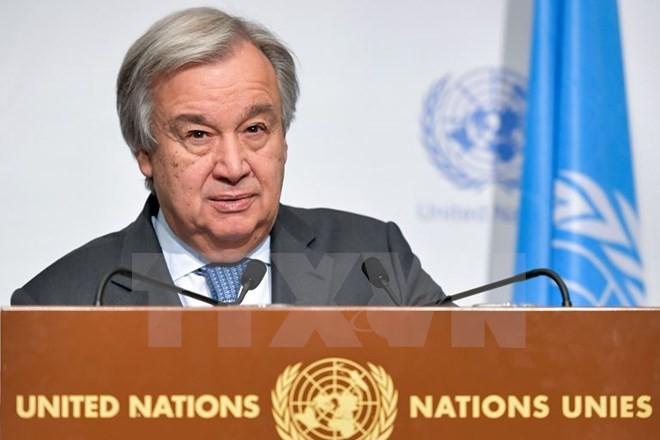 PBB bersedia membantu pemecahan bentrokan di Ukraina Timur - ảnh 1