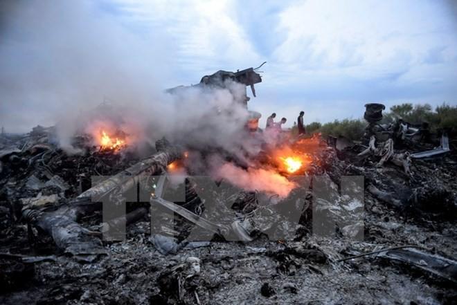 Belanda meresmikan zona peringatan para korban dalam kasus jatuhnya pesawat terbang MH 17 dari Malaysia - ảnh 1