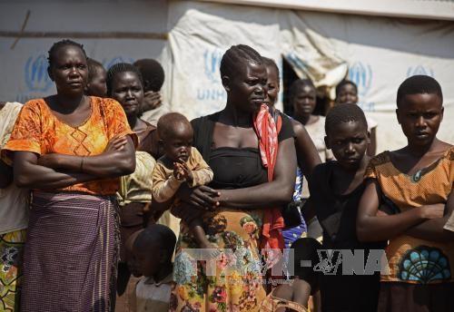 PBB mengutuk serangan-serangan terhadap pekerjaan pertolongan di Sudan Selatan - ảnh 1