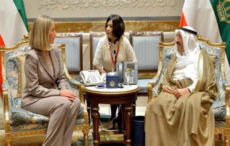 Uni Eropa mendesak negara-negara melakukan perundingan untuk memecahkan krisis negara-negara Teluk - ảnh 1