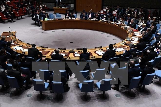 DK PBB mengadakan pertemuan untuk membahas solusi memecahkan krisis di Jerussalem Timur - ảnh 1