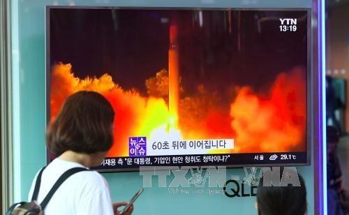 Jepang, AS dan Republik Korea sepakat menimbulkan tekanan maksimal terhadap RDRK - ảnh 1