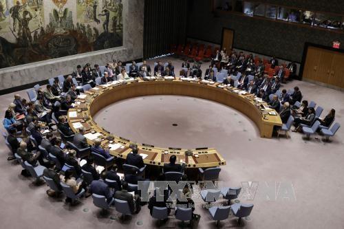 DK PBB mengesahkan resolusi mencegah kaum teroris mendekati sumber senjata - ảnh 1