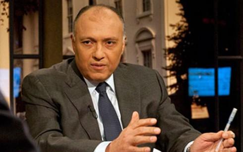 Mesir mengeluarkan syarat memecahkan krisis diplomatik  Qatar - ảnh 1