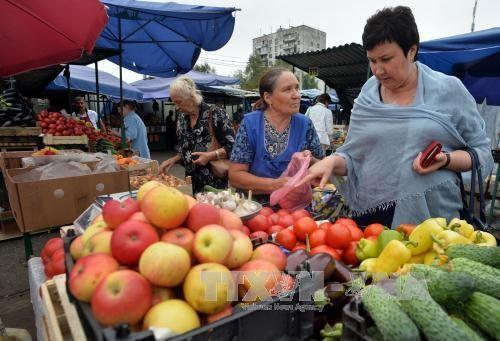 Ekonomi Rusia berkembang stabil tanpa memperdulikan sanksi-sanksi - ảnh 1