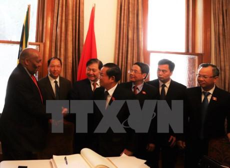 Delegasi tingkat tinggi MN Vietnam mengakhiri dengan baik kunjungan kerja di Afrika Selatan - ảnh 1