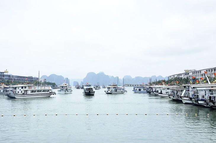 Daerah-daerah di seluruh Vietnam menerima puluhan ribu wisdom dan wisman  sehubungan dengan Hari Nasional Vietnam (02/9) - ảnh 1