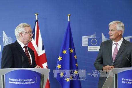 Masalah Brexit: Inggris ingin mempertahankan kerjasama erat dengan Uni Eropa dalam bidang ilmu pengetahuan dan penelitian - ảnh 1