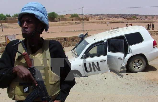 DK PBB mengeluarkan sanksi-sanksi terhadap objek-objek yang merintangi proses damai di Mali - ảnh 1
