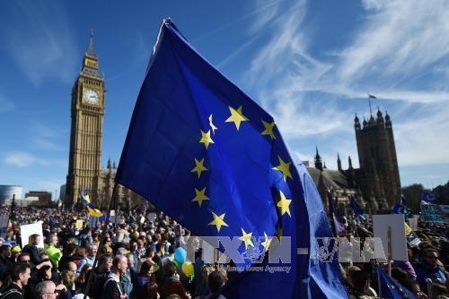Pawai besar memprotes Brexit di London, Inggris - ảnh 1