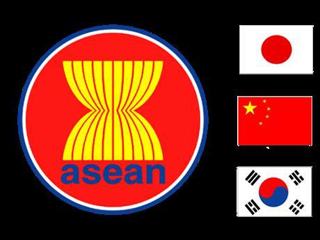 ASEAN+3 menuju ke target membangun komunitas yang lebih besar - ảnh 1