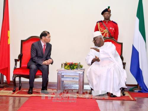 Vietnam dan Sierra Leone memperkuat kerjasama di banyak segi - ảnh 1