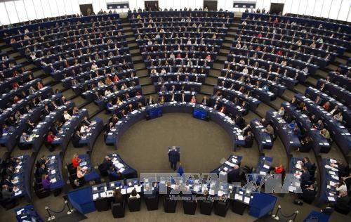 Dewan Parlemen Eropa mengesahkan ketentuan baru tentang pemberantasan korupsi - ảnh 1