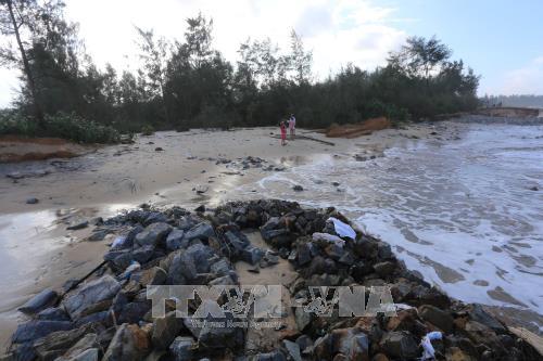Lukxembourg membantu Provinsi Thua Thien-Hue melaksanakan proyek beradaptasi dengan perubahan iklim - ảnh 1