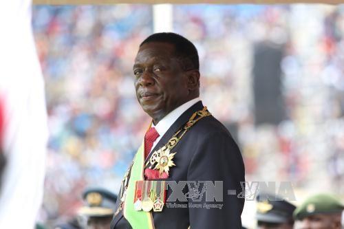 Presiden baru Zimbabwe membubarkan kabinet - ảnh 1