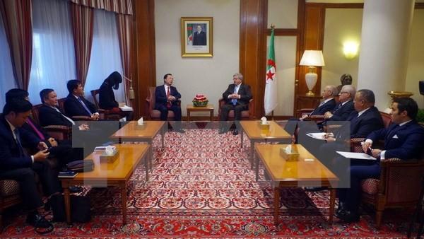 PM Aljazair ingin memperkuat kerjasama yang pantas dengan hubungan yang bersahabat dan erat Aljazair-Vietnam - ảnh 1