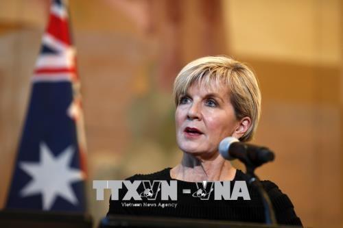 Australia  memprotes tindakan militerisasi yang dilakukan Tiongkok di Laut Timur - ảnh 1