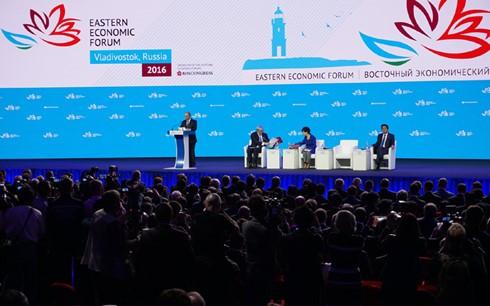 将远东地区建设成为经济社会中心是俄罗斯的优先任务 - ảnh 1
