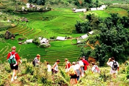发展旅游 进一步为国内生产总值增长做出贡献 - ảnh 1