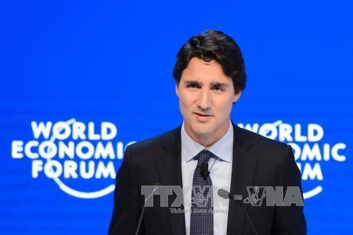 加拿大总理特鲁多预定下周初对美国进行正式访问 - ảnh 1