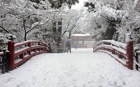 日本继续普降大雪 - ảnh 1