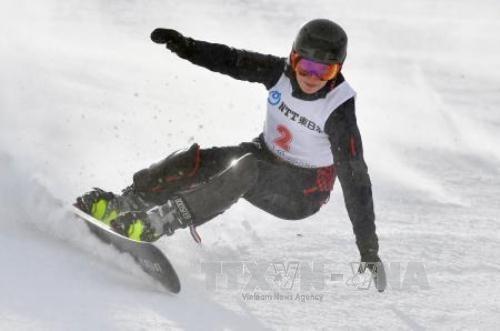 越南首次参加亚洲冬季运动会 - ảnh 1