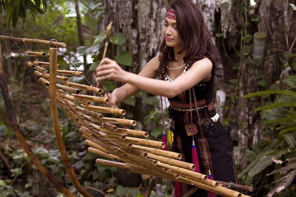 西原地区各族同胞的传统乐器——特龙琴 - ảnh 1