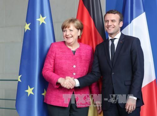 法德联手推动欧盟内部合作 - ảnh 2