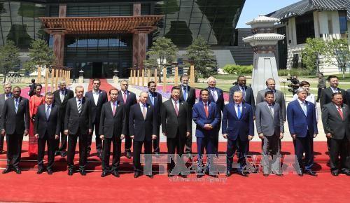 """越南与""""一带一路""""国际合作高峰论坛伙伴方加强合作 - ảnh 1"""